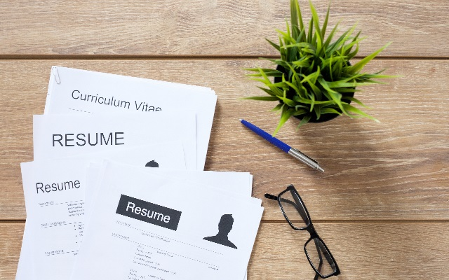 cv template standard professional format careerone career advice